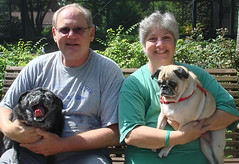 Boomer and Buddy's Forever Home
