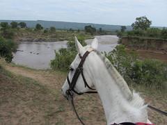 Mara River (Jane, Woodbridge & Horseback Safaris) Tags: masaimara kenyasafari horsesafari horsebacksafari ridingsafari safarisunlimited