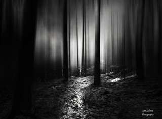 Dark wood....