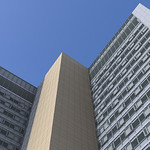 Looking up from ground level (Rendering)