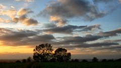 Today's Sunset (lincoln_eye) Tags: uk november autumn trees sunset england vegetables field clouds way countryside unitedkingdom path branches silhouettes bluesky lincolnshire ridge gb crops trunks hazy viking bushes incinerator bracebridgeheath