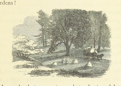 Image taken from page 351 of 'Madam How and Lady Why; or, first lessons in earth lore for children. With ... illustrations'