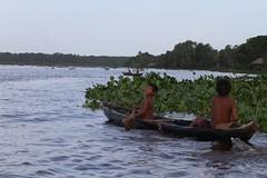 (marcwiz2012) Tags: people southamerica river boat child venezuela delta canoe local dugout orinoco indigenouspeople localpeople