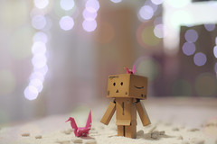 Me and my friends (Steve_snowman) Tags: light paper photographer craft hobby professional sands danbo stevanusjayanto