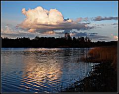 Ripples, Forfar Loch (2) (ronramstew) Tags: sky cloud reflection nature landscape scotland angus forfar loch