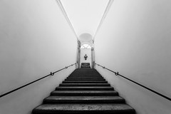 18 Steps upwards (Blende1.8) Tags: bw rome museum stairs blackwhite nikon steps sigma symmetry treppe bust staircase sw bste schwarzweiss rom 1224mm stufen treppenhaus gelnder symmetrie treppenstufen schwarzweis symmetrisch d700