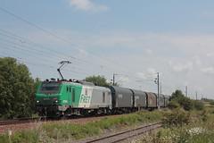 BB 27066 / Dunkerque (jObiwannn) Tags: train locomotive prima fret ferroviaire