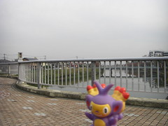 Ambipom in Kasukabe, Saitama 8 (Kasadera) Tags: toys figure pokemon pokmon  kasukabe   pokemonkids  ambipom     ambidiffel capidextre