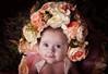 DSC_4109 (Claire Jaggers Photography) Tags: newborn baby 3months portrait monolight sidelight 2875mm nikond700