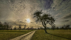 Sunset (Erich Hochstöger) Tags: sonnenuntergang sunset sonne sun himmel sky wolken clouds weg path baum bäume tree trees wiese meadow landschaft landscape hdr canoneos70d sigma1020mm österreich austria niederösterreich loweraustria