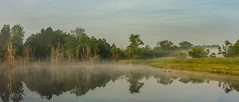 Awesome foggy sunrise (Rick Smotherman) Tags: wood trees sky nature water field leaves june fog clouds canon outdoors morninglight spring pond overcast 7d cloudysky buschwildlife canon7d canon1585mmlens