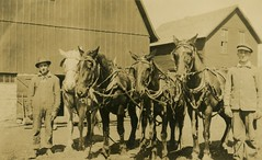 Two Men and a Team of Horses (Alan Mays) Tags: old horses men animals portraits vintage buildings clothing teams farmers photos antique farming barns hats ephemera clothes photographs postcards overalls farms occupational tack foundphotos occupations reins rppc realphotopostcards
