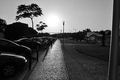 Contrast Light (pat.netwalk) Tags: light blackandwhite bw ambient eveninglight copyrightbypatwwwnetwalkch