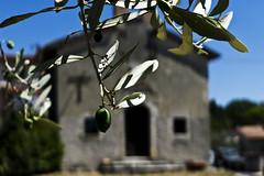 Monteleone Sabino 12-08-13 (Amaia Hodge) Tags: summer italy digital lumix holidays italia lazio sabino monteleone lx5
