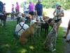 7-8-2012WorldsEnd016