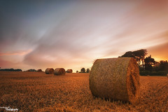 Leaving The Field (Dave Brightwell) Tags: light field barley sunrise canon wheat straw hay bales hitech redsnapper countydurham peterlee castleeden bwnd davebrightwell