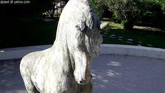 le cheval du parc Maurin  Berre (Dominique Lenoir) Tags: sculpture horse france statue caballo cheval video skulptur escultura provence estatua statua cavallo cavalo pferd standbeeld esttua paard beeldhouwkunst benk scultura southfrance rzeba bouchesdurhne berre bildhauerei 13130 kuvanveisto berreltang dominiquelenoir