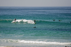 DSC_6786 (zimway2k) Tags: beach surf break pacific grove surfer surfing shore surfboard asilomar wetsuit