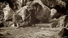 Madre (Blas Torillo) Tags: bw woman naturaleza byn blancoynegro nature sepia méxico río river mexico blackwhite nikon coolpix puebla p500 professionalphotography señora nikonp500 nikoncoolpixp500 coolpixp500 fotografíaprofesional mexicanphotographers fotógrafosmexicanos sanagustínahuehuetla