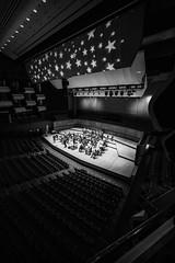 The Orion Orchestra rehearse (Dan Chippendale) Tags: leica london festival hall nuts royal m type mozart royalfestivalhall 240 typ m240 anightunderthestars november2013 leicamtype240 leicam240 leicamtyp240 leica240 leicatyp240