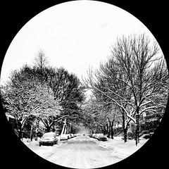 snowglobe (vivagirlco) Tags: circle round circular iphone 010514