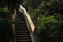 Luang Prabang (*jerem*) Tags: travel canon river temple asia taxi monk laos wat mekong luang prabang 600d