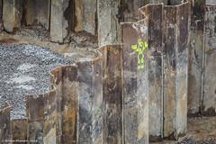 e-m1 14#072 (Red Brick 59) Tags: color steel soil sverige gravel vxj kronobergsln zuikoautot135mmf35 olympusomdem1