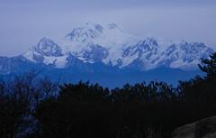 Sandakphu, Darjeeling, West bengal, India (Sougata2013) Tags: winter india mountain cold nature landscape hill february himalaya bengal darjeeling hilltop bangla westbengal 2014 sandakphu himalayanrange kanchanjangha sonarbangla kanchenjungarange