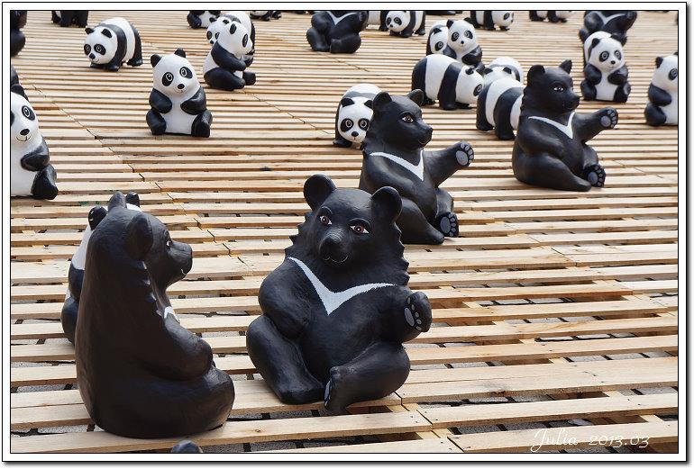 1600貓熊世界之旅 (4)