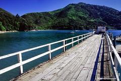 Portage Bay (hapePHOTOGRAPHIX) Tags: newzealand bay southisland portage marlborough aotearoa sounds neuseeland nikonf80 nuevazelanda sdinsel islasur kenepurusound hapephotographix 554nzl 554nsi