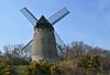 Bidston Windmill (4) (Andrew_D_Hurley) Tags: trees england tree bluesky birkenhead blueskies footpath wirral merseyside bidston bidstonhill bidstonwindmill wirralwalk wirrallandmark wirralfootpath bidstonwalk