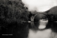 spin'a Cavaddu (steff808) Tags: bridge blackandwhite bw france blancoynegro puente noiretblanc corse corsica pont francia biancoenero corcega nikond600 nikon2485 spinacavaddu