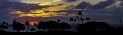 Downtown Lahaina (Four Straites) Tags: hawaii maui lahaina banyon