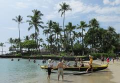 Palm Trees in Kona (Stabbur's Master) Tags: beach hawaii palmtree bigisland kona hawaiibeach hawaiianbeach konabeach bigislandbeach kamakahonu