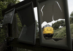 Thrashing Through (Wulfruna) Tags: uk railroad blue tractor train track br diesel railway loco preserved gala northyorkshire carriages nymr beckhole englishelectric northyorkshiremoors largelogo dieselgala 37264