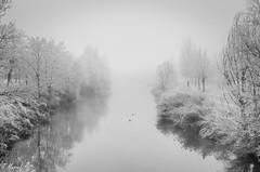 Follow me (tmuriel67) Tags: niebla mist fog river ice frozen mistery minimalism blackwhite blancoynegro