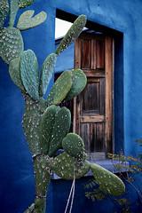 El Presidio (barbara carroll) Tags: tucsonarizona elpresidio color blue bluehouse