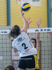 170211_VBTD1-Toggenburg_126.jpg (HESCphoto) Tags: volleyball vbtherwil volleytoggenburg damen nlb 99ersporthalle therwil saison1617