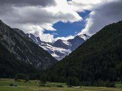 2485 - Gran Paradiso (Sergio Dini) Tags: sergiodini lumix lumixgx1 gx1 valdaosta valledaosta granparadiso massiccio cogne alpi graie