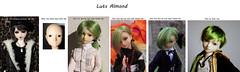 Almonds Transition (Wildcard_Snowy) Tags: luts almond kdf male boy bjd change variation transition