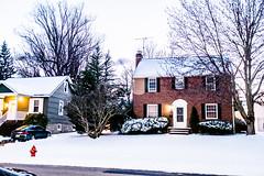 Snow (3-14-17)-007 (nickatkins) Tags: snow snowstorm winter winterweather outdoors nature cold