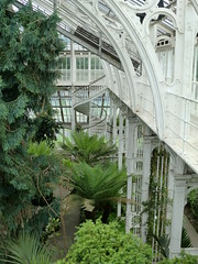 Temperate House (ForgottenGenius) Tags: house kew gardens botanical temperate