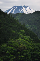 Rising Above (deletio) Tags: snow mountains green nature japan forest fuji hakone mtfuji 2013 kanagawaprefecture d700 afnikkor300mmf4ed ashigarashimodistrict