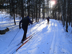 Hartley Field xc ski trails