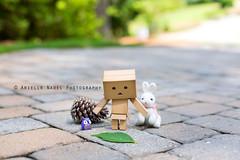The Last Item on the List (Arielle.Nadel) Tags: summer rabbit leaf cardboard owl pinecone scavengerhunt yotsuba danbo 31100 toyphotography  100daysofsummer danboard  bunnyrel lastitem ariellenadelphotography