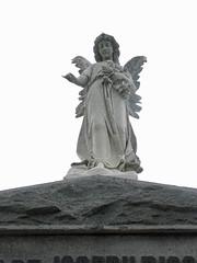 Bisso Angel