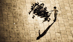 Vencia 31/07/2013 (Albert Sarola) Tags: venice sepia child panoramica palomas tamron venecia nio hdr nen coloms vencia santmarc canon450d santmarcos tamron18250 sarola albertsarola