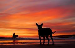 Y te esper en la orilla.......... (T.I.T.A.) Tags: sunset espaa atardecer ocaso pontevedra tita sanxenxo alanzada playadelalanzada lalanzada carmensolla carmensollafotografa carmensollaimgenes