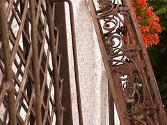 Still Lives (AincaArt) Tags: mobile handy iron oberbayern upperbavaria blume geranium stilllives eisen kunsthandwerk mungga artisancraftwork aincaart