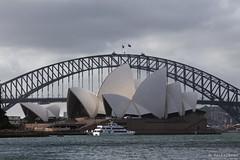 20131103-20-Sydney Harbour Bridge and Opera House from The Royal Botanic Gardens.jpg (Roger T Wong) Tags: city bridge sydney australia nsw newsouthwales cbd operahouse sydneyoperahouse sydneyharbourbridge canonef70200mmf4lisusm canon70200f4lis canoneos6d